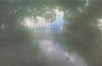 59_sardina-roma-2012003-giardini-villa-borghese-small.jpg