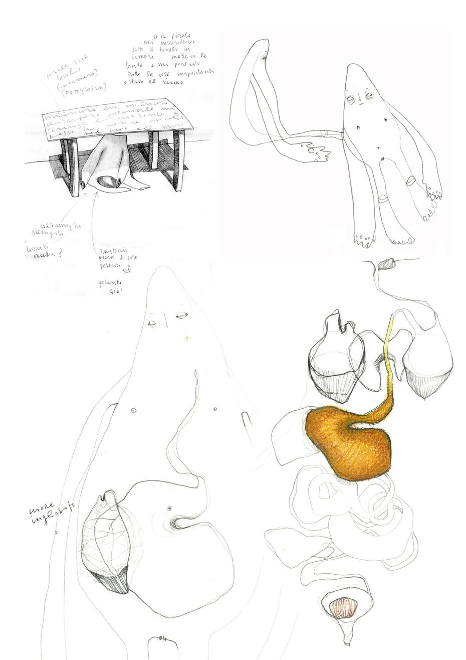 Autoritratto al riparo _ Cecilia Viganò _ 2005 disegni