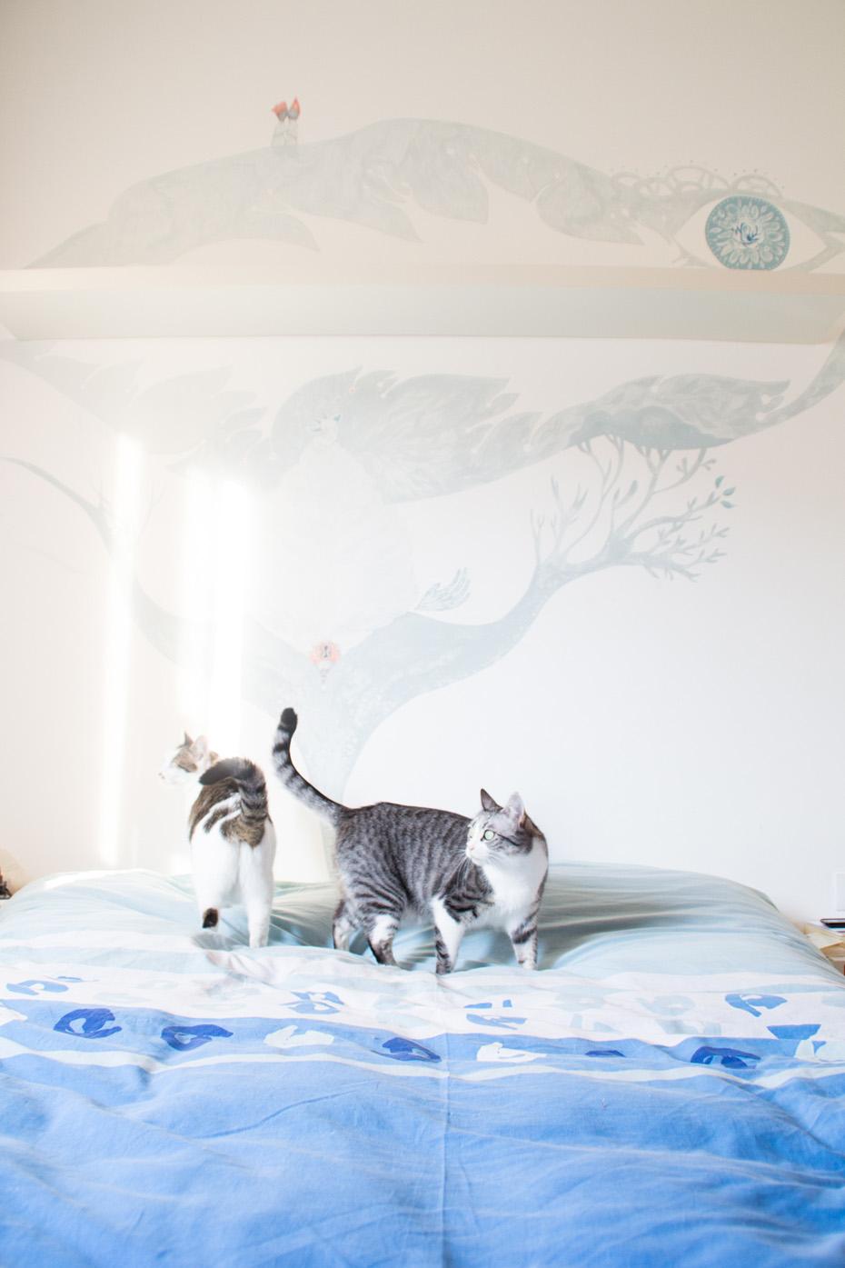 murales daka-17
