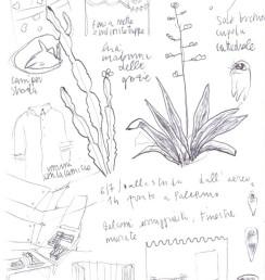 Palermo disegnata 01 small